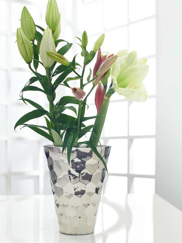 Vessel/Vase